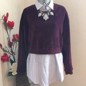 Burgundy velvet cropped sweater